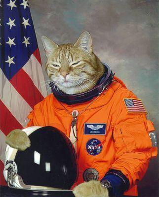 astronaut kitty - photo #3